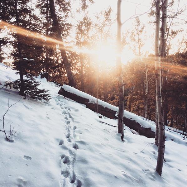 عکس پروفایل زمستان و برف جدید