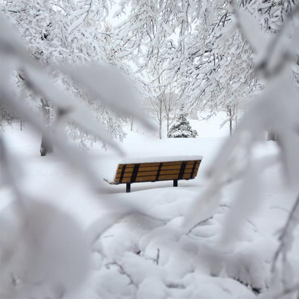 عکس زمستان با کیفیت بالا