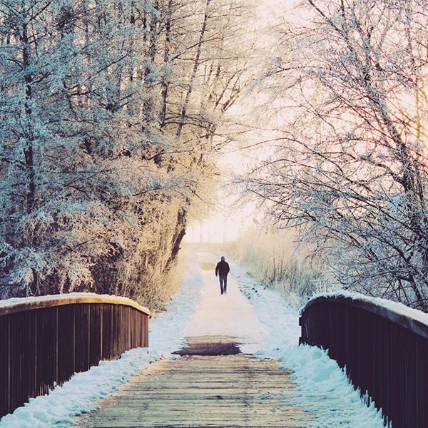 عکس پروفایل طبیعت زمستان