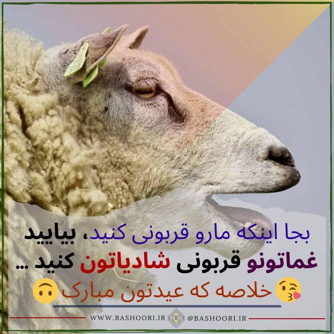 دلنوشته هایی زیبا در مورد عید قربان