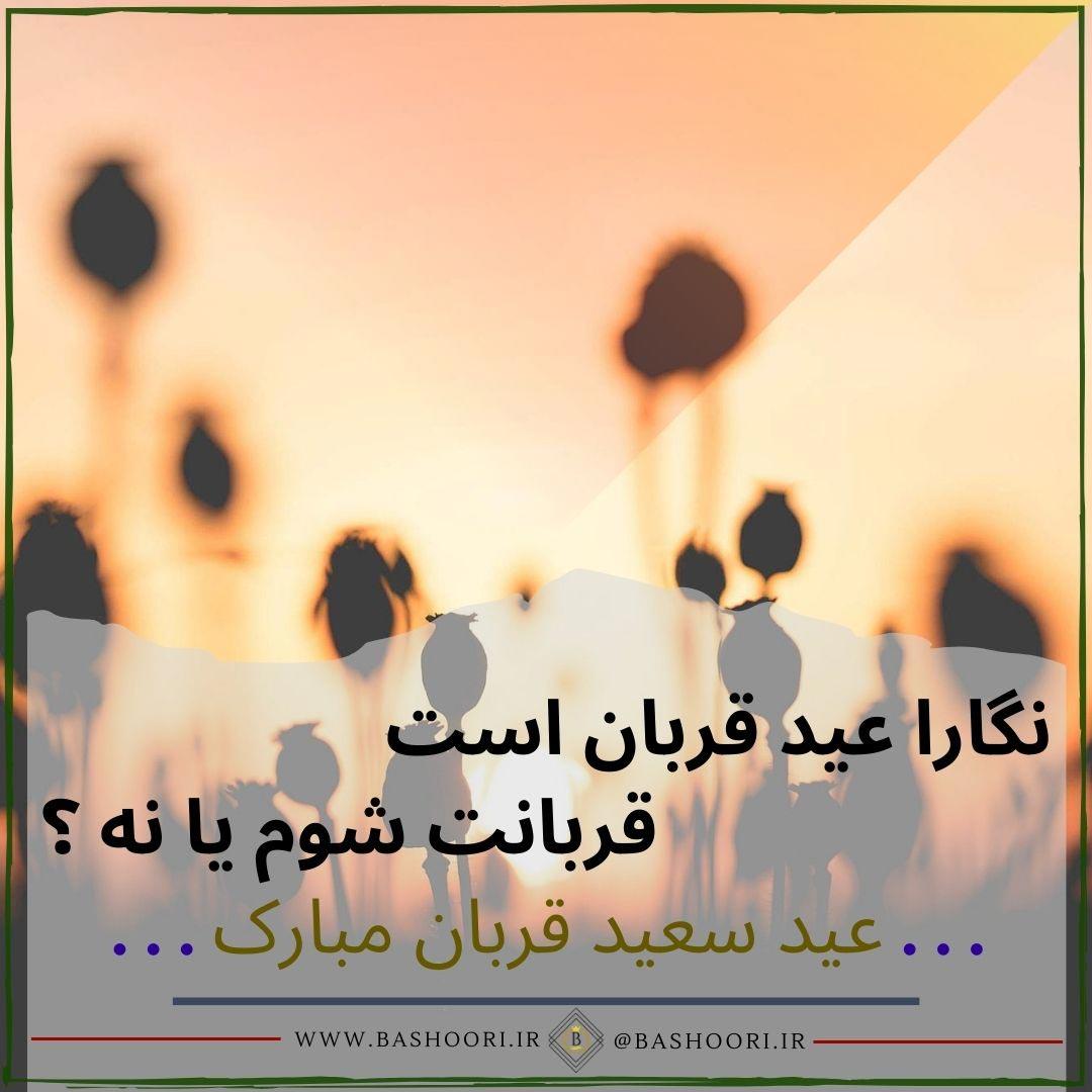 متن در مورد عید قربان با عکس